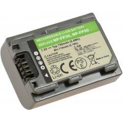 aku baterie pro Sony DCR-DVD404E 750mAh
