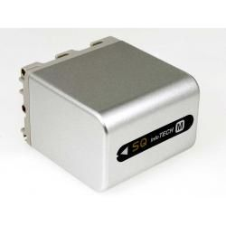 aku baterie pro Sony Videokamera DCR-DVD101 5100mAh