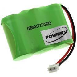 baterie pro Panasonic Typ P-P303PA/1B