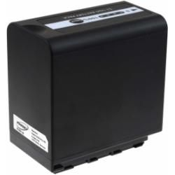 baterie pro Panasonic VW-VBD29